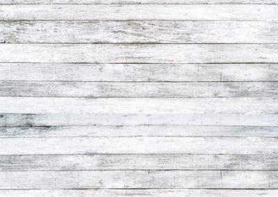 wood-white